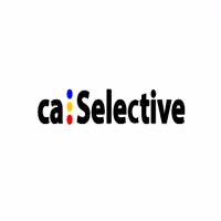 CA Selective Executive Jobs