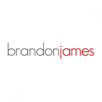 Brandon James Executive Jobs