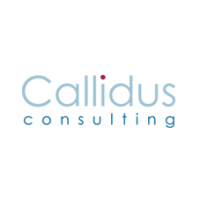 Callidus Consulting Ltd. Executive Jobs