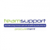 Team Support Midlands Executive Jobs